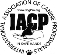 International Association of Canine Professionals (IACP) Badge - Leader of the Pack Canine Institute